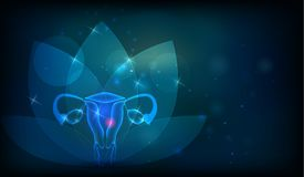 Female reproductive organ. S flower at the background. Fertility and reproductive system health care Stock Image