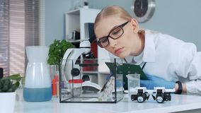 Female research scientist learning animal behavior during the experiment. And making notes in modern chemistry lab stock footage