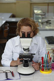 Female researcher Stock Photos