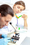 Female researcher analyzes tubes stock image