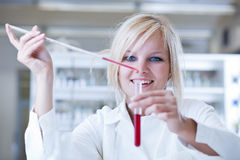 Female researcher  in a chemistry lab Royalty Free Stock Images