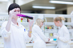 Female researcher in a chemistry lab Stock Images