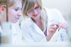 Female researcher in a chemistry lab Stock Photography