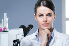 Female researcher in the chemistry lab Stock Image