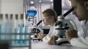 Female researcher conducting an experiment in lab. Concentrated female scientist researcher and her young male coworker conducting experiment in laboratory stock footage