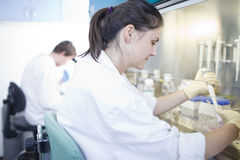 Female researcher doing research in a lab Stock Image