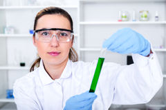 Female researcher with glass equipment in the lab. Royalty Free Stock Photo