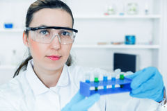 Female researcher with glass equipment in the lab. Stock Image
