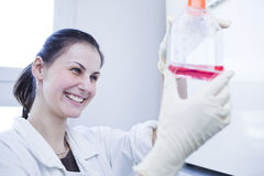 Female researcher  in a lab Royalty Free Stock Photo