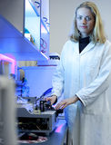 Female researcher  in a laboratory Stock Photo