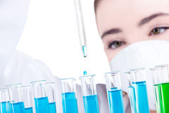 Female researcher in laboratory Royalty Free Stock Image