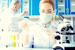 Female researcher taking sample of chemical liquid. Future breakthrough. Waist up shot of an adult women wearing safety glasses using a pipette while taking a royalty free stock photography