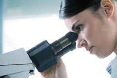 Female researcher using microscope close up Royalty Free Stock Photo