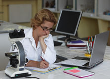 Female researcher working Stock Image