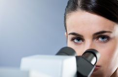 Female researcher working Royalty Free Stock Images