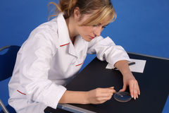 Female researcher working. Side view. Royalty Free Stock Image