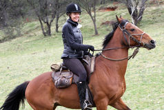 Female rider stock photography