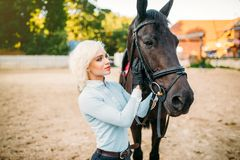 Female rider hugs her horse, horseback riding. Female rider hugs her horse, friendship, horseback riding. Equestrian sport, young woman and beautiful stallion Royalty Free Stock Image