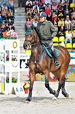 Female rider on jump horse Stock Photos