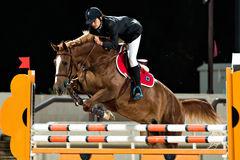 Female rider participates in horse jumping Royalty Free Stock Images
