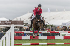 Female rider with red jacket jumping a red and white fence Stock Photography