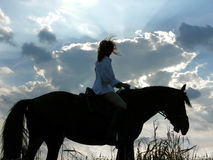 Female rider and tired horse in the evening Stock Images