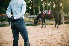 Female rider trains her horse, horseback riding Stock Photography