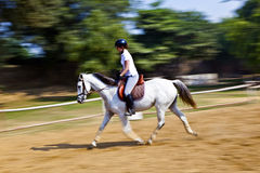 Female rider trains the horse Royalty Free Stock Photography