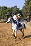 Female rider trains the horse Royalty Free Stock Photos