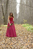 Female with rose in the forest Stock Photography