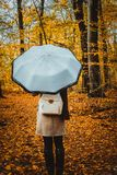 Female with rotate white umbrella in the autumnal golden colored forest path royalty free stock photography