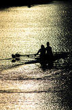 Female Rowers on Sunset Lake Royalty Free Stock Photo