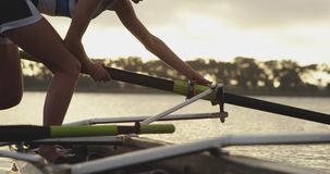Female rowing team training on a river. Side view of a young adult Caucasian female rower attaching an oar to a racing shell before training on a river stock footage