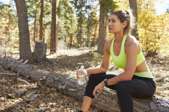 Female runner in a forest holding water bottle takes a break Stock Photography