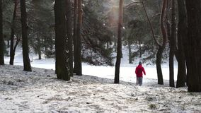 Female runner jogging in cold winter forest wearing warm sporty running clothing and gloves. Running sport woman. Female runner jogging in cold winter forest stock video footage
