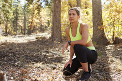 Female runner kneeling in a forest, looking away Royalty Free Stock Images