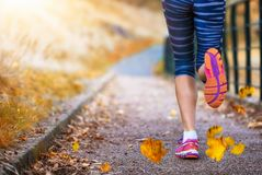 Female running in a park. Legs of a female runner in a park during autumn season Stock Image
