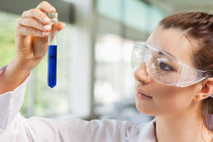 Female science student looking at a test tube Stock Photos