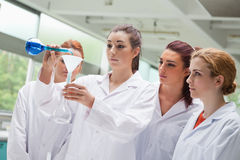Female science students pouring liquid in a flask Royalty Free Stock Image