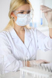 Female scientific researcher in laboratory Royalty Free Stock Photos