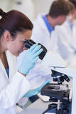 Female scientific researcher using microscope in lab Royalty Free Stock Photography