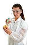 Female scientist Royalty Free Stock Photography