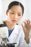 Female Scientist Analyzing Sample In Laboratory Stock Photo
