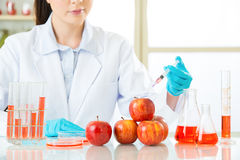 Female scientist develop and test all of genetic modification food. Are safe stock photos