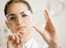 Female scientist examining sample Royalty Free Stock Photos
