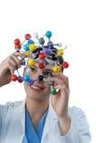 Female scientist holding molecular model Stock Image