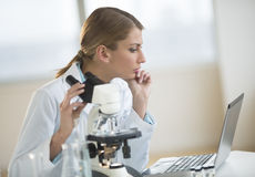 Female Scientist Looking At Laptop In Laboratory Royalty Free Stock Photos