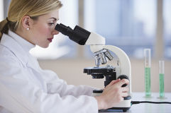 Female scientist looking through microscope Stock Photos