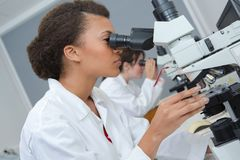 Female scientist looking through microscope in laboratory stock photo