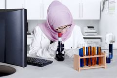 Female scientist with microscope in the lab. Female Muslim scientist working in the laboratory and looking through a microscope stock photo